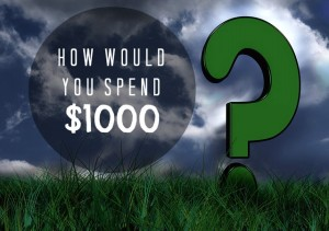 how would you spend $1000