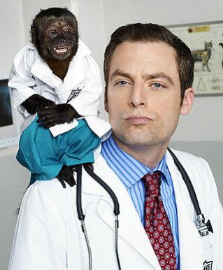 Monkey_HSA_preventative_care_physical_blood_work_lab_test